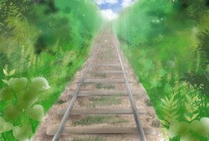 智頭急行は鉄印がゲットできる!イベント列車あまつぼしは木の温もりがいっぱい!