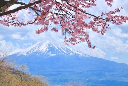 Dot GLAMPING のパークキャビンはどの棟からも富士山が正面に見える!
